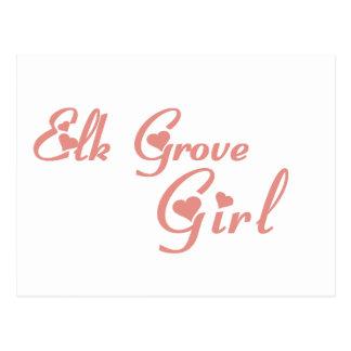 Elk Grove Girl tee shirts Postcards