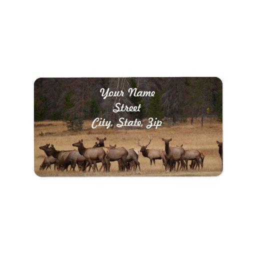 Elk Herd  Address Sticker Personalized Address Label