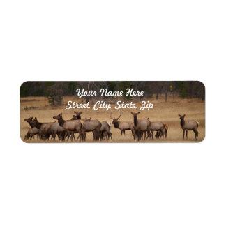 Elk Herd  Return Address Sticker Return Address Label