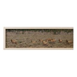 Elk Herd Wooden Wine Box