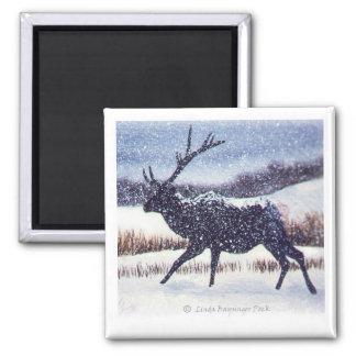Elk in the Snow Square 2 Inch Square Magnet