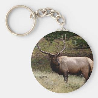 Elk in the Wild Basic Round Button Keychain