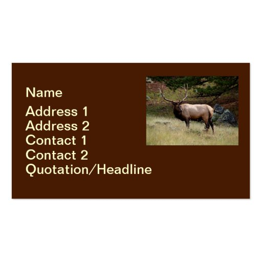 Elk in the Wild Business Card Templates