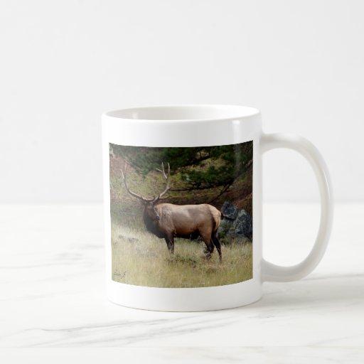 Elk in the Wild Classic White Coffee Mug