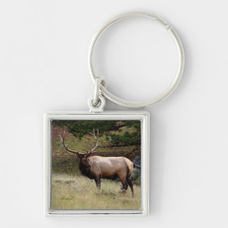 Elk in the Wild Silver-Colored Square Keychain