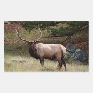 Elk in the Wild Sticker