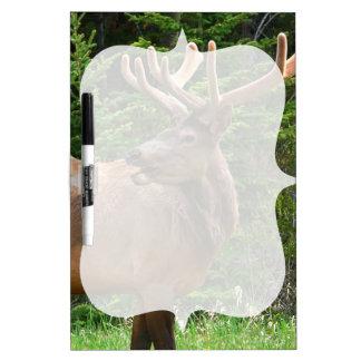 Elk in Velvet Unique Wildlife Gift Ideas Hunters Dry-Erase Board