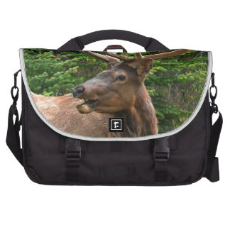 Elk in Velvet Unique Wildlife Gift Ideas Hunters Commuter Bag