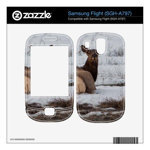 Elk Interest Samsung Flight Decals