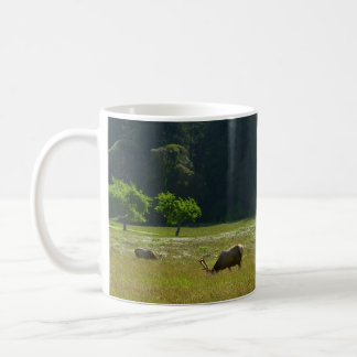 Elk Meadow at Redwood National Park Coffee Mug