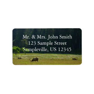 Elk Meadow at Redwood National Park Label