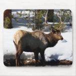 Elk Mousepad