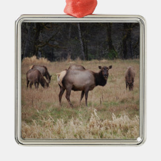 Elk Ornament