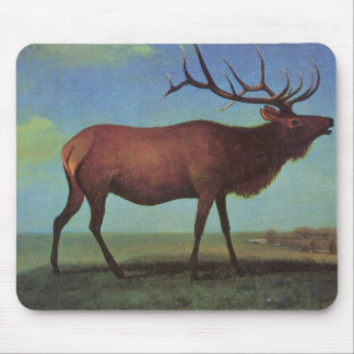 Elk Painting Mouse Pad