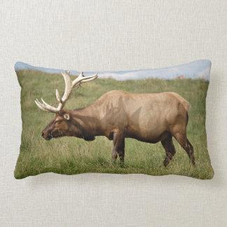 Elk Pillows