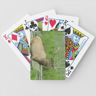 Elk poker cards