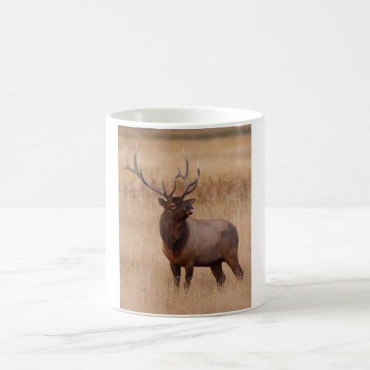 elk raspberry coffee mug