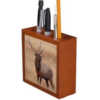 elk raspberry pencil holder