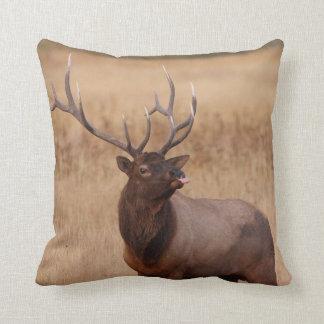 elk raspberry pillow