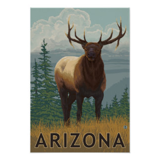 Elk SceneArizona Poster