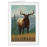 Elk SceneColorado Greeting Card