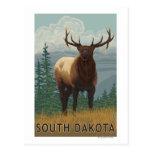 Elk SceneSouth Dakota Post Cards