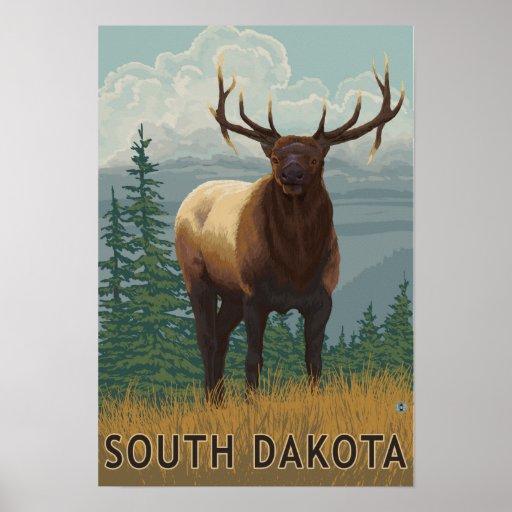 Elk SceneSouth Dakota Poster