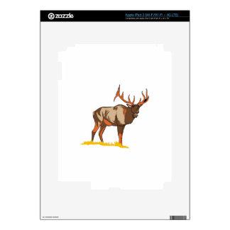 Elk iPad 3 Decals