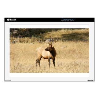 Elk Decals For Laptops