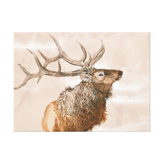 Elk Stretched Canvas Print