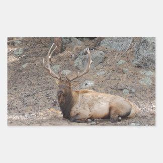 Elk Wapiti Stickers