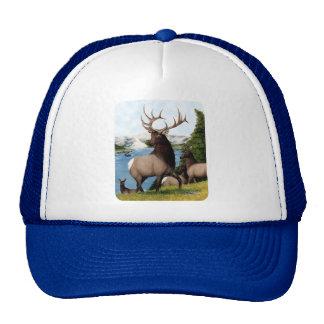 Elk Wapiti Trucker Hats