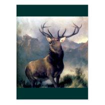 Elk wild animal painting postcard