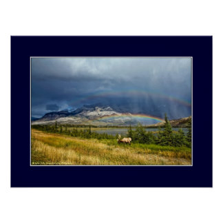 Elk with double rainbow poster