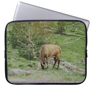 Elk with Velvet Antlers Computer Sleeves