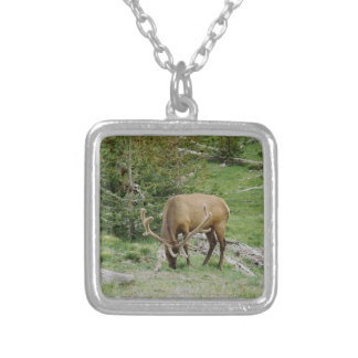 Elk With Velvet Antlers Silver Plated Necklace
