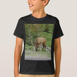 Elk With Velvet Antlers T-Shirt
