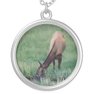 Elk - Yellowstone Round Pendant Necklace
