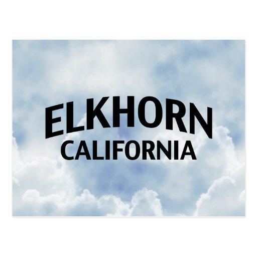 Elkhorn California Postcard