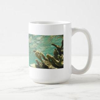 Elkhorn coral in Florida Keys Mug