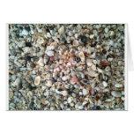 Ella vende cáscaras del mar en la playa en la Flor Tarjeta