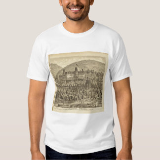 Ellanova Springs 10 miles from Pittsburgh T-shirt