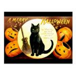 Ellen H. Clapsaddle: Halloween Cat Postcard