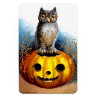 Ellen H. Clapsaddle: Halloween Owl Magnet