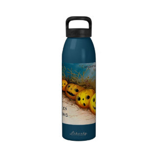 Ellen H. Clapsaddle: Pumpkin Row Reusable Water Bottle