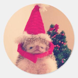 b86379565d6bc Christmas Hedgehog Stickers