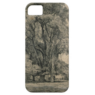 Elm trees in Old Hall Park, East Bergholt, 1817 (p iPhone SE/5/5s Case