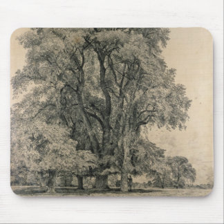 Elm trees in Old Hall Park, East Bergholt, 1817 (p Mousepads