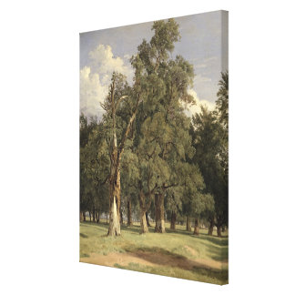 Elm trees in Prater, 1831 Canvas Print