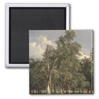 Elm trees in Prater, 1831 Refrigerator Magnets